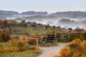 Uitkijkpunt met bankje op duintop met lagen mist tussen duinhellingen tijdens zonsopkomst in het Nationaal Park Zuid-Kennemerland bij Bloemendaal.