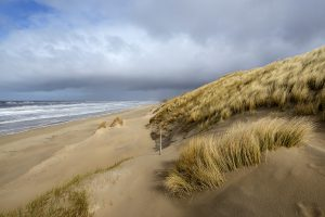 Uitzicht vanaf zanderige duinhelling met wuivend helmgras op de Noordzee en het verlaten strand tijdens winter in Wijk aan Zee.