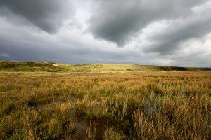 Donkere wolken pakken zich samen boven een natte vallei in de duinen van de Slufter op het Waddeneiland Texel