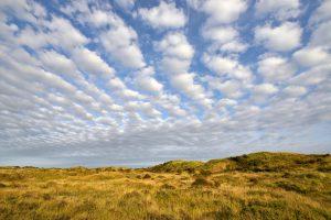 Waaier van schapenwolken boven de duinen van het Noordhollands Duinreservaat bij Wijk aan Zee
