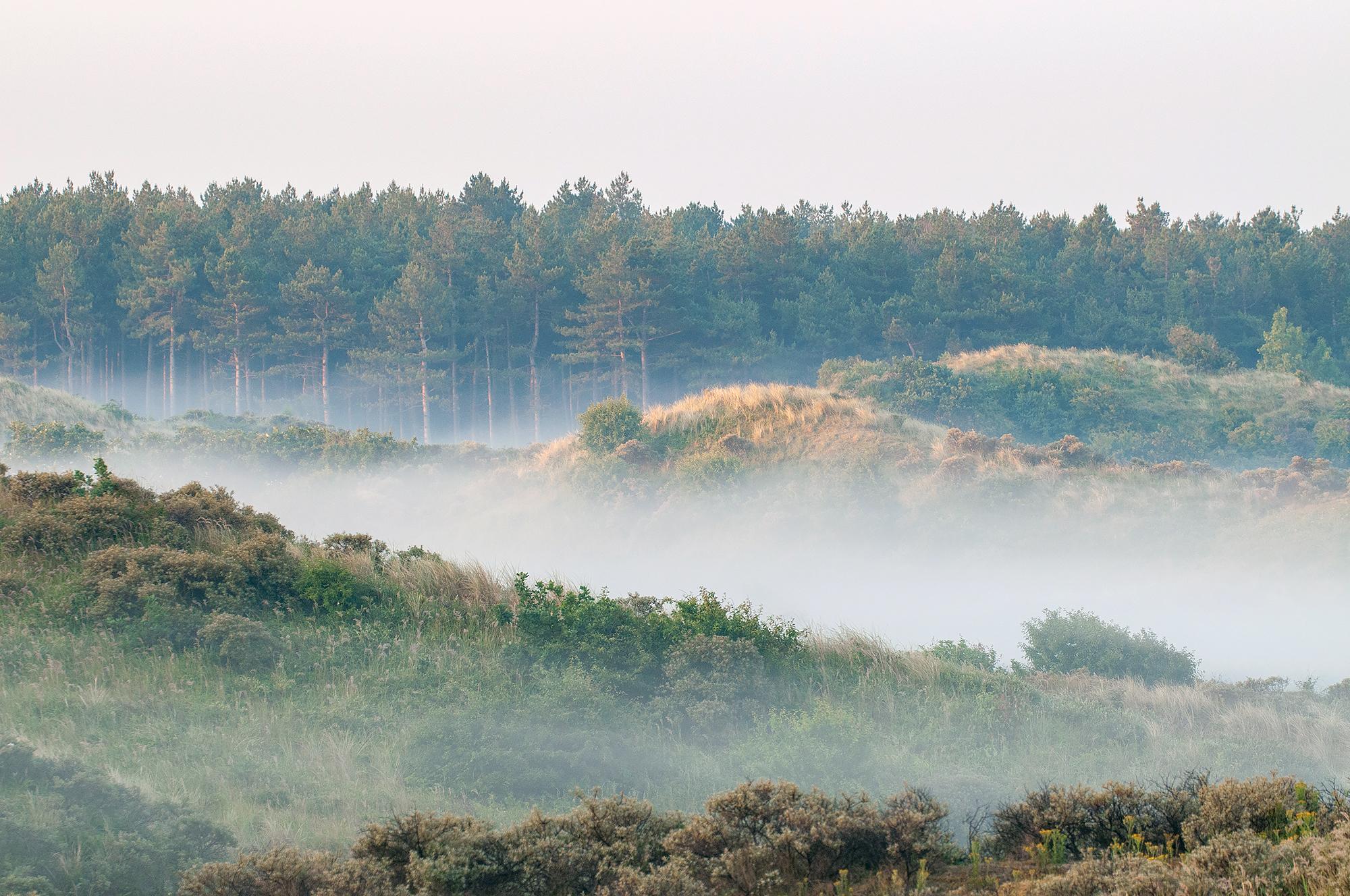 Lagen mist tussen duinhellingen tijdens een koude zonsopkomst in het Noordhollands Duinreservaat bij Egmond-Binnen