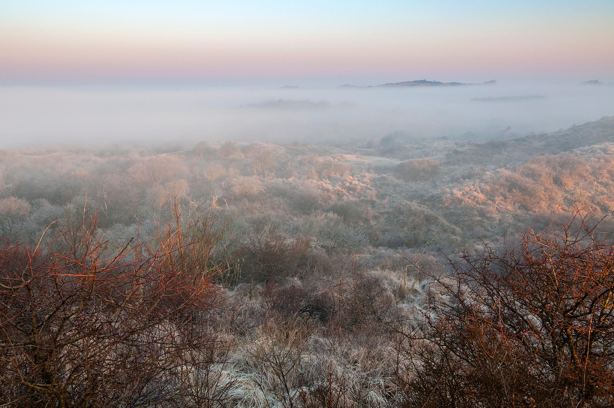 Mistige zonsopkomst in een koud, bevroren duinlandschap van het Nationaal Park Zuid-Kennemerland bij IJmuiden