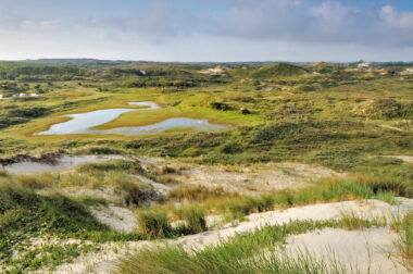 Uitzicht vanaf duintop over duinlandschap van Zuider Achterveld met zanderige hellingen en natte valleien in het Noordhollands Duinreservaat bij Egmond aan Zee.