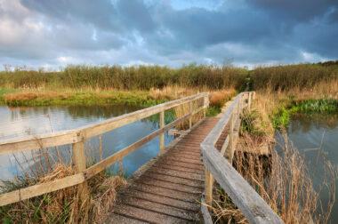 Houten wandelbrug over het water van het moeras in de duinen van het Zwanenwater bij Callantsoog.