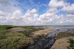 Stromend water in kreek tijdens laagwater op de kwelder 'De Schorren' op het waddeneiland Texel.