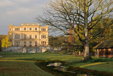 Warm licht van zonsopkomst schijnt op een grote beuk en het landhuis van Landgoed Elswout in Overveen.