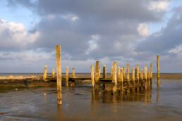 Zonlicht schijnt op de verweerde, houten palen en planken van een steiger in de haven van De Cocksdorp op het waddeneiland Texel.