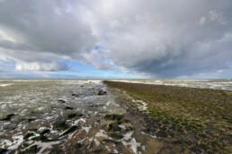 Dreigende wolken van naderende storm boven de noordzee en strekdam van de Hondsboscche Zeewering bij Petten