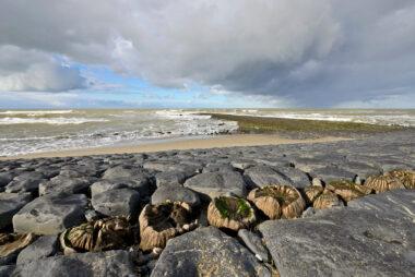 Dreigende wolken van naderende storm boven de keien en palen van de Hondsbossche Zeewering bij Petten.