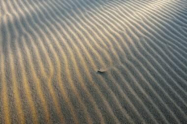 Licht van zonsopkomst schijnt over de grillige vormen van bevroren zandribbels aan de voet van de duinen op het strand van Heemskerk.
