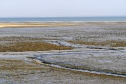 Uitzicht vanaf de dijk over slingerende geul langs drooggevallen slikplaten en oesterbanken tijdens laagwater bij De Cocksdorp op het waddeneiland Texel.