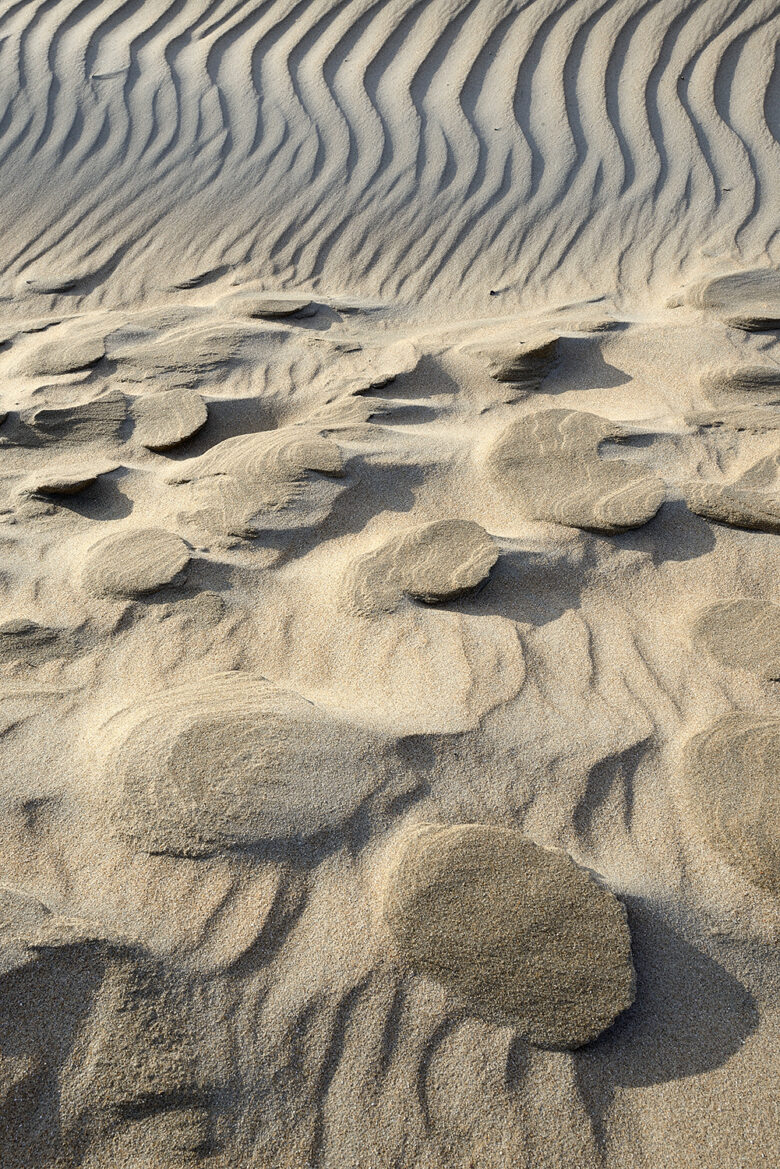 Door de wind uitgesleten vormen in het duinzand van de helmduinen op het Kennemerstrand bij IJmuiden.