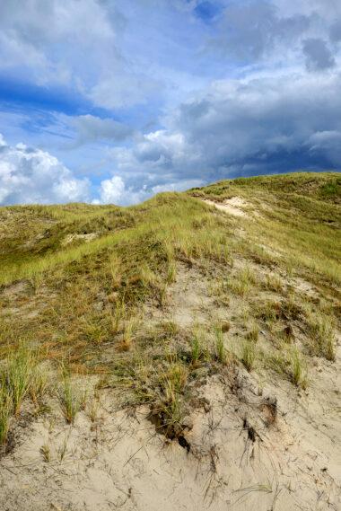 Kale duinhellingen met zand, grassen en mossen in het open duinlandschap van de Noordduinen bij Julianadorp aan Zee.