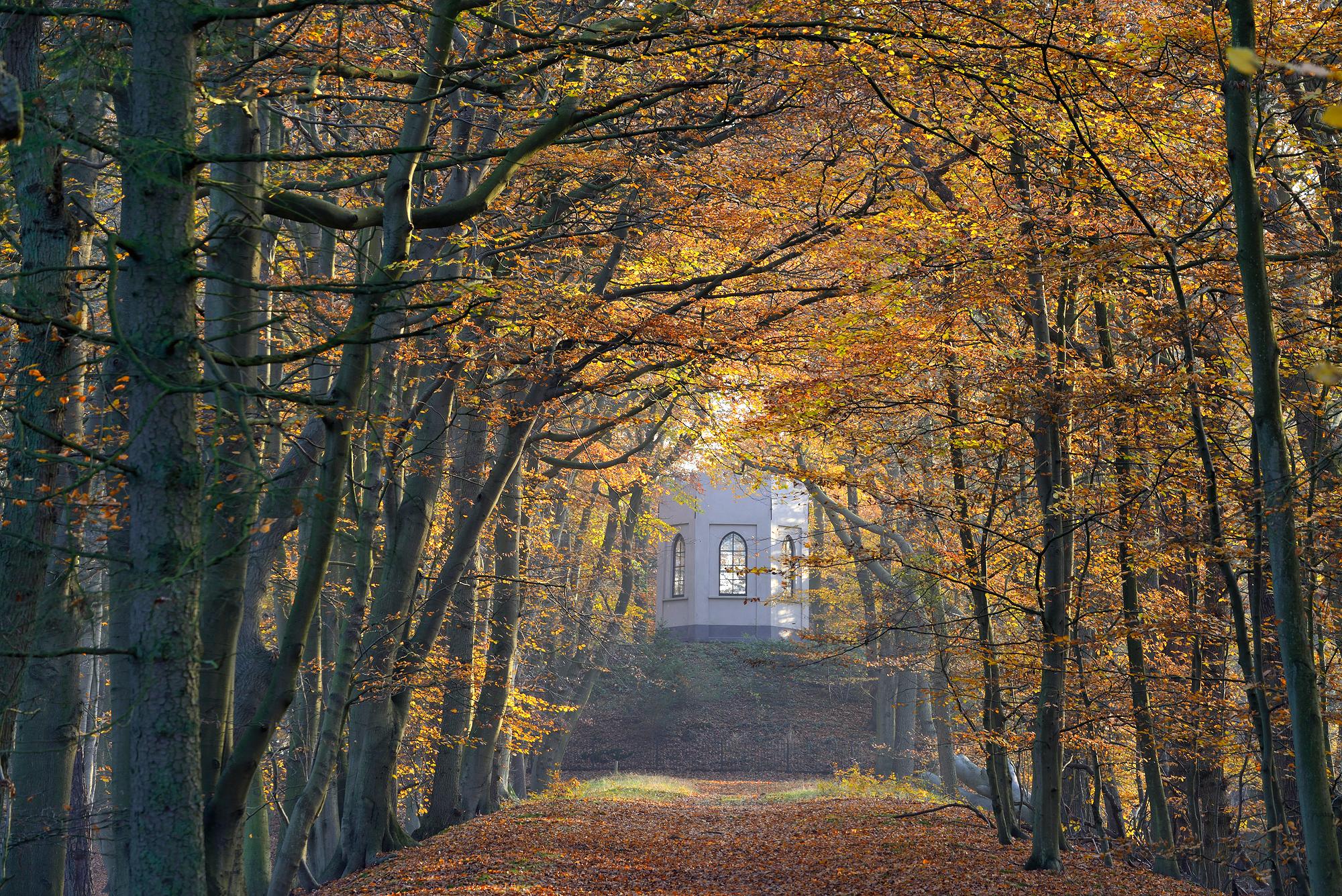 Zicht op het uitkijkpunt Belvedere door een bomenlaan met geel en oranje blad tijdens herfst op Buitenplaats Leyduin in Heemstede