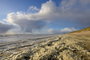 Regenbui en vlokken van aangespoeld schuimalg langs de vloedlijn tijdens storm op het strand van Wijk aan Zee.