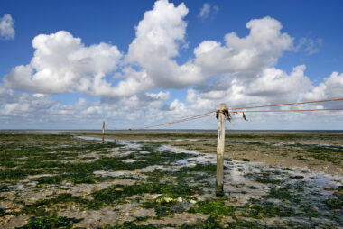 Met palen en touw afgezet vogelreservaat op drooggevallen slik tijdens laagwater op De Volharding op waddeneiland Texel
