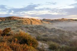 Warm zonlicht schijnt over duinhelling met mist op de voorgrond tijdens zonsopkomst in het Noordhollands Duinreservaat bij Egmond-Binnen