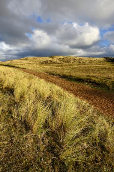 Mooie wolkenlucht boven met gras bedekt wandelpad door de duinen van het Noordhollands Duinreservaat bij Bakkum.