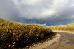 Donkere lucht van een regenbui boven het pad van strandopgang in de Noordduinen bij Callantsoog