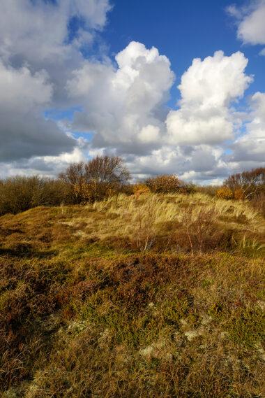 Blauwe lucht met wolken boven duinhelling met gras en heide tijdens herfst in de Pettemerduinen bij Petten.
