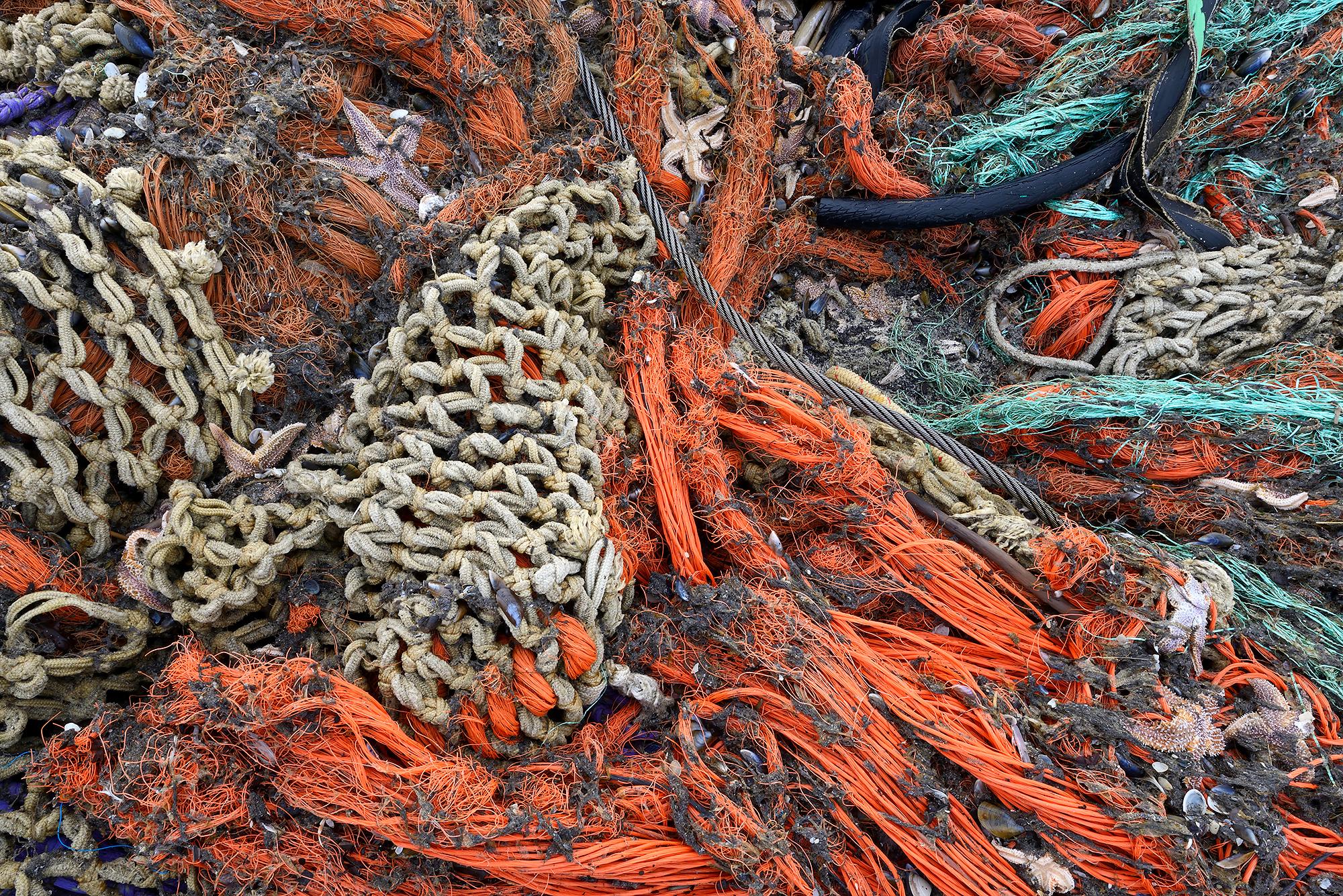 Aangespoeld visnet met zeesterren langs de vloedlijn op het strand van Wijk aan Zee na een winterstorm op de Noordzee;
