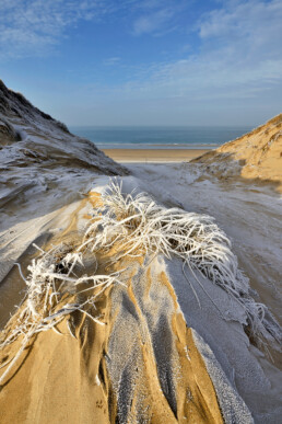 Ruige rijp op een pol met helmgras in een kerf in de duinen na een koude winterse nacht op het strand van Heemskerk.
