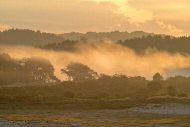 Lagen mist tijdens zonsopkomst in de duinen van het Nationaal Park Zuid-Kennemerland bij Bloemendaal aan Zee.