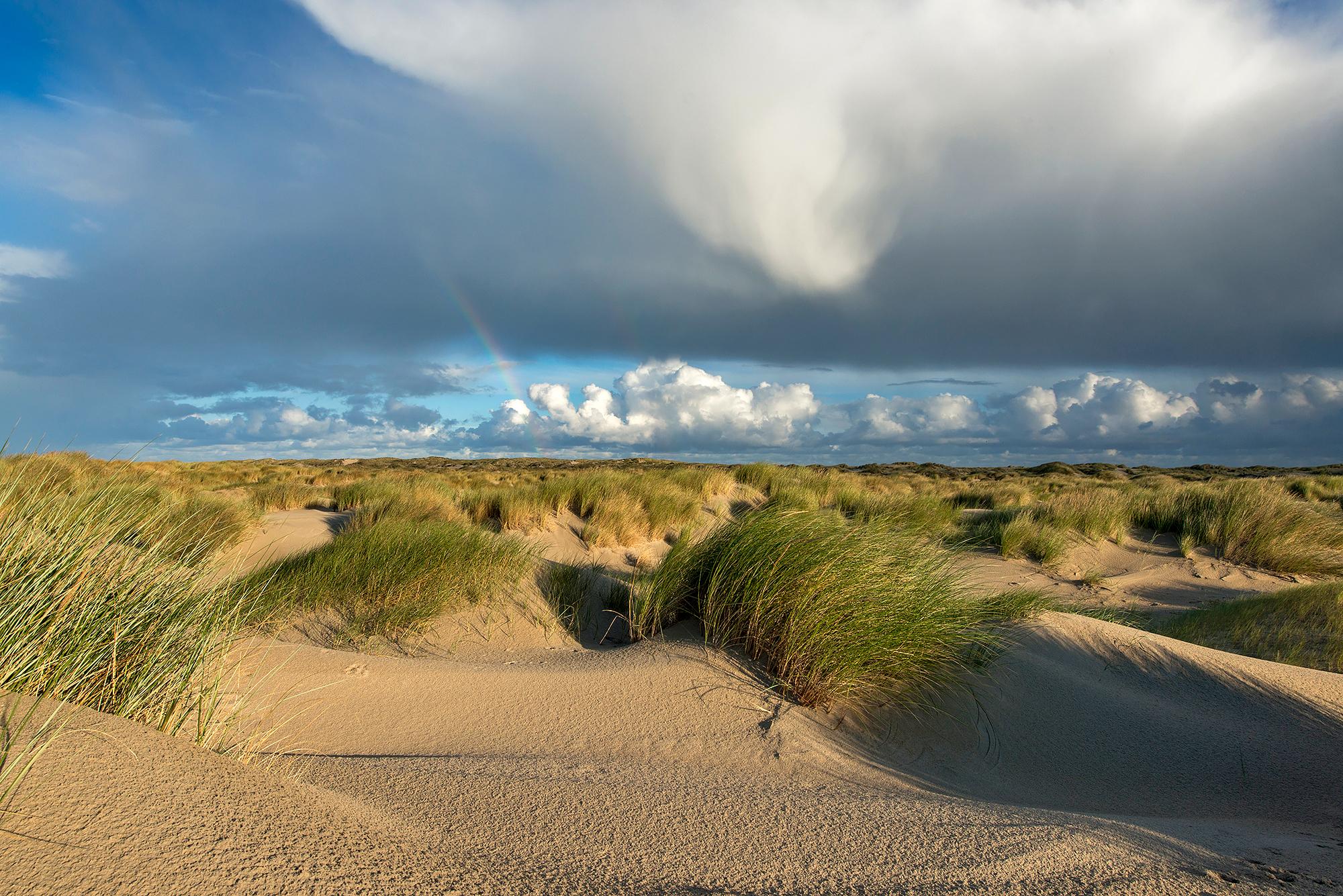 Grote wolk van regenbui boven wuivend helmgras in de zeeduinen van De Hors op het zuidpunt van Waddeneiland Texel