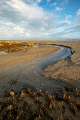 Kreek slingert over het strand van de Kwade Hoek in de Duinen van Goeree