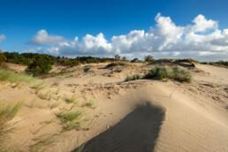 Blauwe lucht en wolken boven het gele duinzand van stuifduinen in het natuurgebied van Meijendel bij Wassenaar