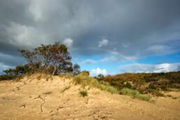 Wolken en regenboog boven een groepje bomen en het kale zand van stuifduinen in Meijendel bij Wassenaar