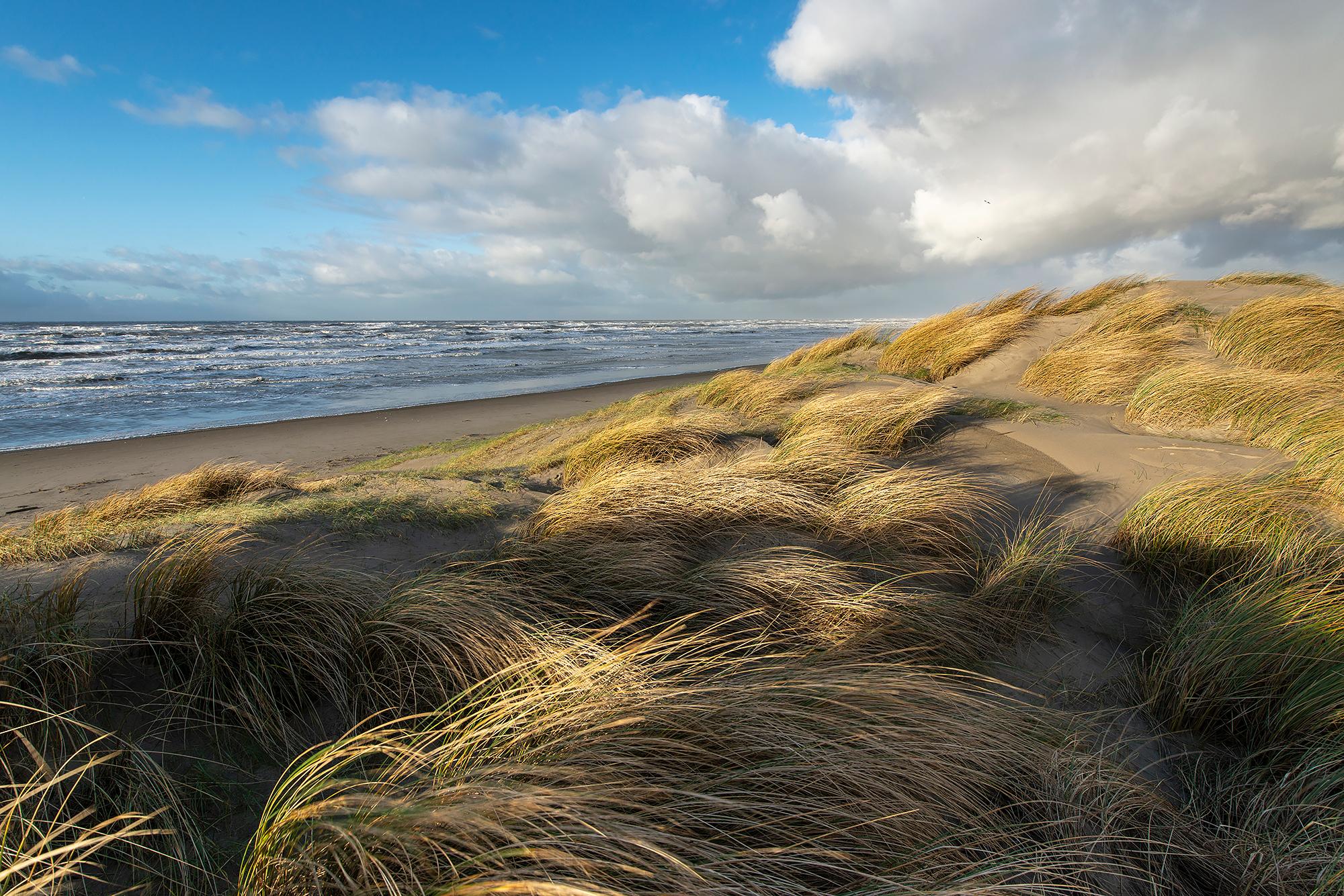 Uitzicht op het strand en de Noordzee vanuit de duinen op het strand van Wijk aan Zee
