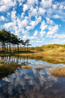 Weerspiegeling van wolken (Altocumulus Floccus) in het water van een duinmeertje in het Noordhollands Duinreservaat bij Egmond-Binnen