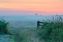 Roze lucht en mist aan de grond tijdens zonsopkomst in de weilanden van Weijenbus en Vroonmeer bij Uitgeest