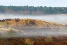 Laagjes mist tussen de duinhellingen tijdens zonsopkomst in het Noordhollands Duinreservaat bij Egmond-Binnen