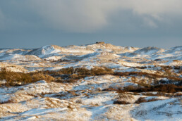 Zonlicht schijnt over struweel en wit laagje sneeuw op de duinen van Texel